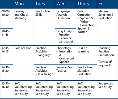 dominion_tesol_timetable タイムテーブル