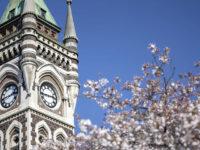 ニュージーランド大学留学・大学院留学ページを拡充しました!